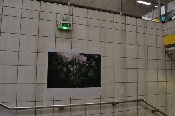 Expolaroid Rennes 2017_64